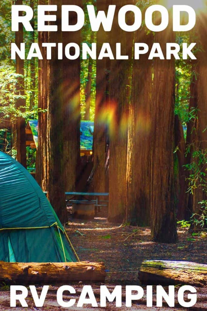 Redwood National Park RV Camping